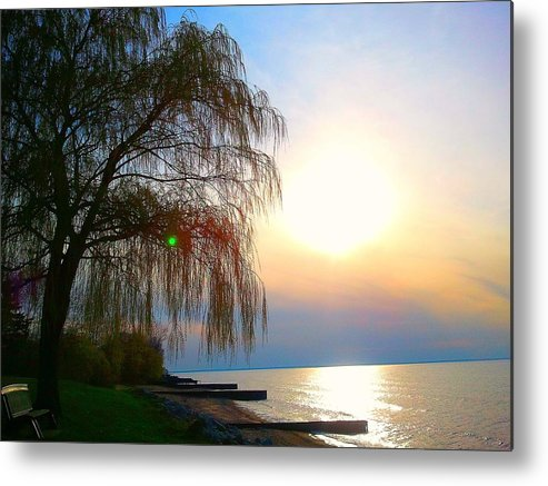 Nature Metal Print featuring the photograph Reminisce by Zane Chowdhery