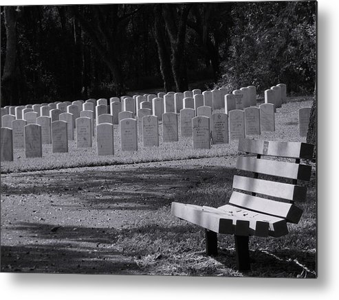 Resting Place Metal Print featuring the photograph Resting Place by Warren Thompson