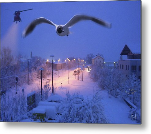 Seagull Metal Print featuring the digital art Seagull At Winter by Nafets Nuarb
