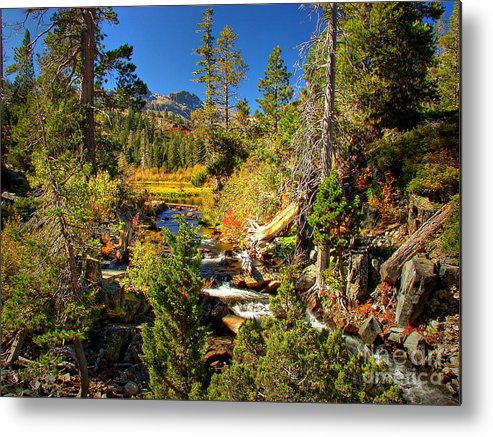 Sierra Nevada Fall Beauty Metal Print featuring the photograph Sierra Nevada Fall Beauty At Lily Lake by Scott McGuire
