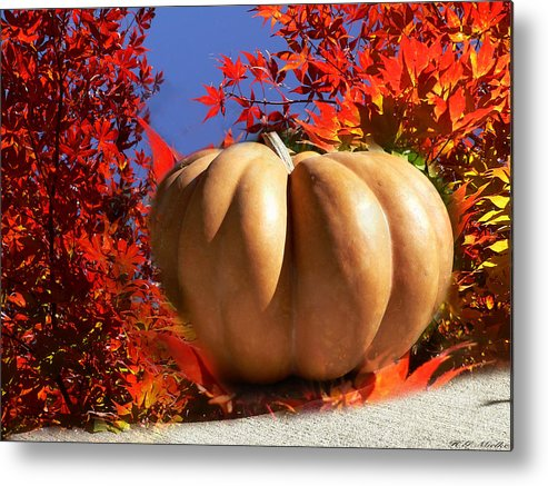The Great Pumpkin And October Colors Metal Print featuring the photograph The Great Pumpkin And October Colors by Heinz G Mielke