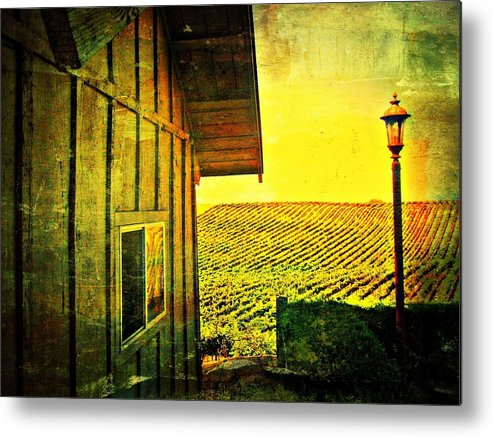 Wine Metal Print featuring the photograph Vineyard Reflection by Kevin Moore