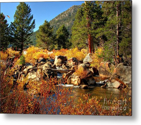 West Fork Carson River Metal Print featuring the photograph West Fork Of The Carson River Fall Colors by Scott McGuire