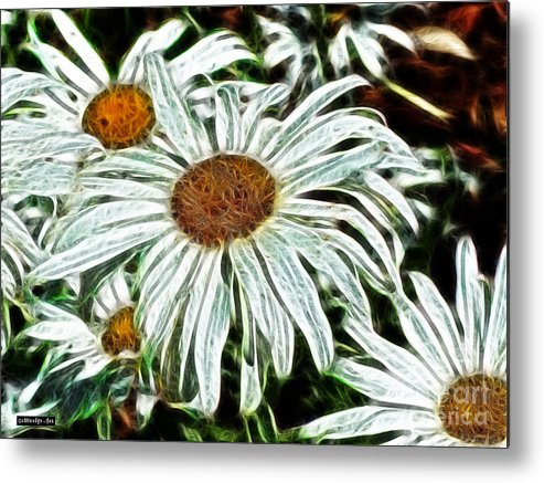 White Daisies Metal Print featuring the painting White Daisies by Methune Hively
