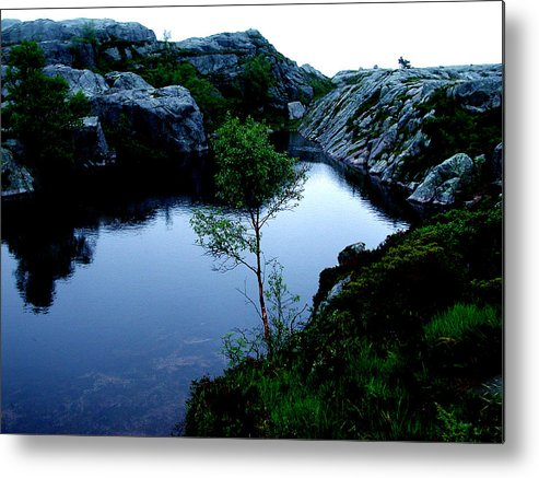 Colette Metal Print featuring the photograph Wild Nature In Norway by Colette V Hera Guggenheim