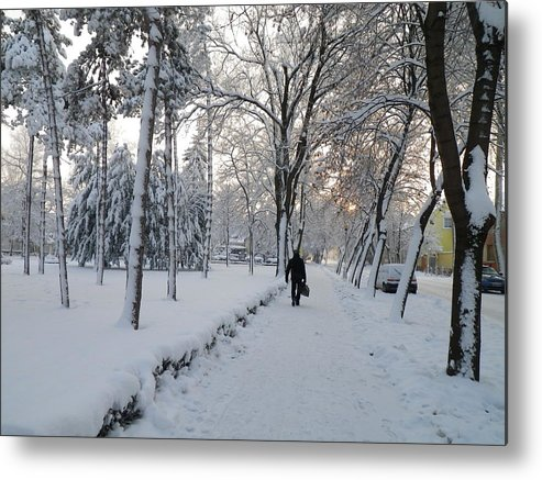 Snow Metal Print featuring the photograph Winter In Mako by Anna Ruzsan