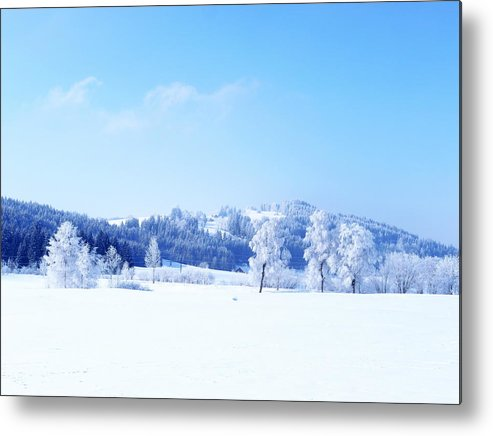 Horizontal Metal Print featuring the photograph Winter Landscape by Rolfo Rolf Brenner
