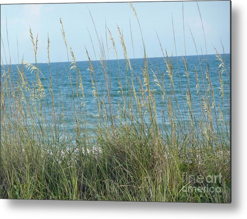 Beach Metal Print featuring the photograph Afternoon At The Beach by Barb Montanye Meseroll