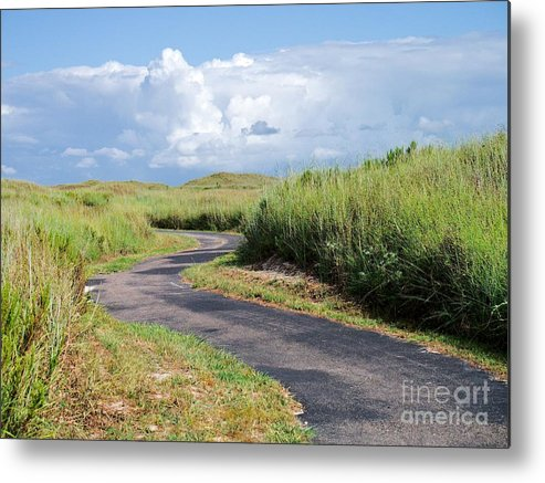 Path Metal Print featuring the photograph An Inviting Path by Gary Richards