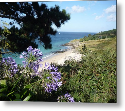 Coast Brittany Flowers Sea Ocean Bay Pines France Metal Print featuring the photograph Bel-ile-en-mer by Lizzy Forrester