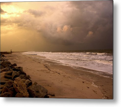 Sea Gull Metal Print featuring the photograph Storm On The Beach by Paul Boroznoff