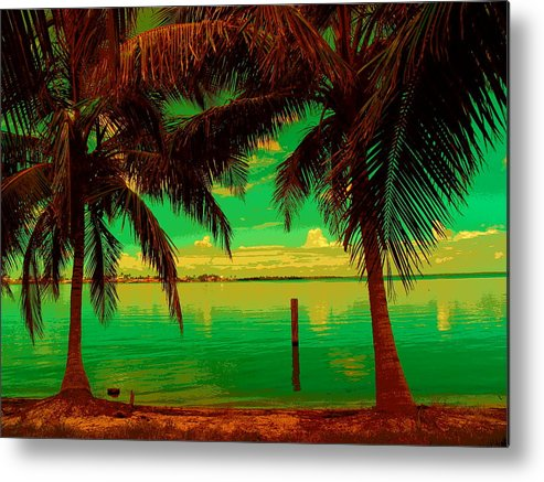 Abstract Metal Print featuring the photograph Tropic Nite by Florene Welebny