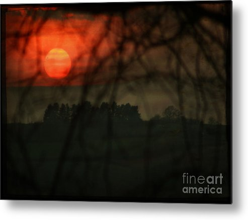 Sunset Metal Print featuring the photograph The Sunset by Angel Ciesniarska