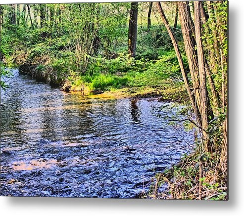 Harrison Metal Print featuring the photograph A Moment To Myself by Kathy Tarochione