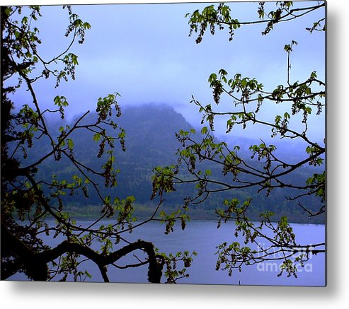 Multnomah Falls Metal Print featuring the photograph A Peek At Washington by PJ Cloud