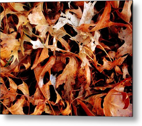 Oak Leaves Metal Print featuring the photograph A Pile Of Leaves by Beth Akerman