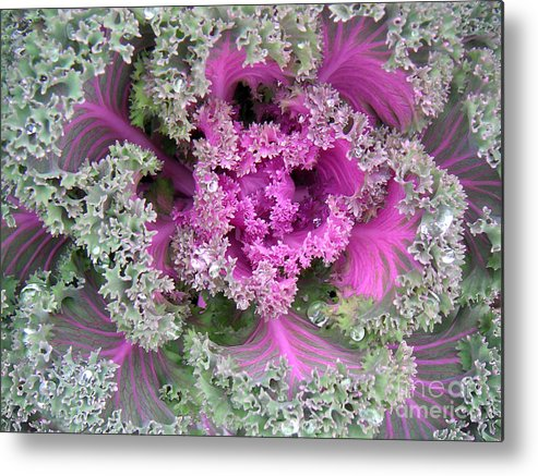 Nature Metal Print featuring the photograph A Study In The Shades Of Spring Two by Lucyna A M Green