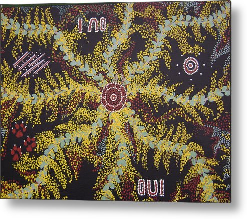 Acacia Blossoms Metal Print featuring the painting Acacia Blossoms In Oz by Laura Johnson