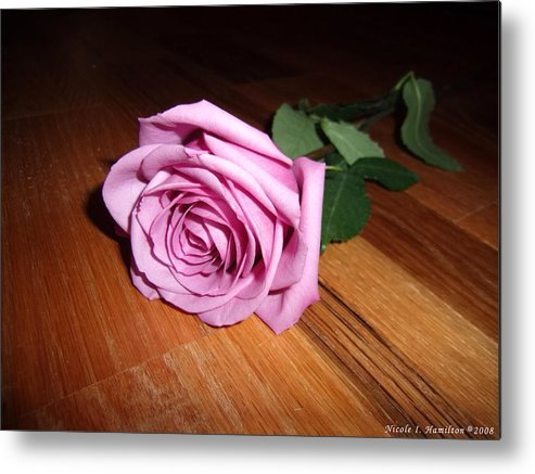 Rose Metal Print featuring the photograph Accolade by Nicole I Hamilton