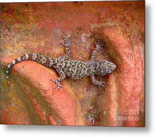 Nature Metal Print featuring the photograph Art Among The Ruins - Six by Lucyna A M Green