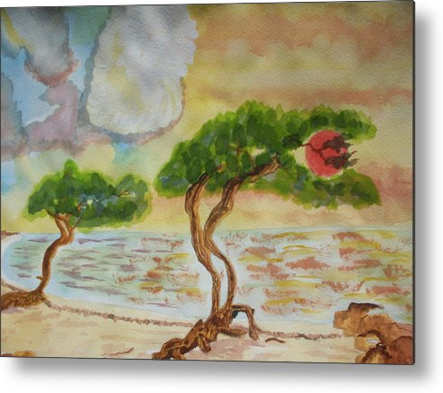 Metal Print featuring the painting Aruba Sky by Warren Thompson