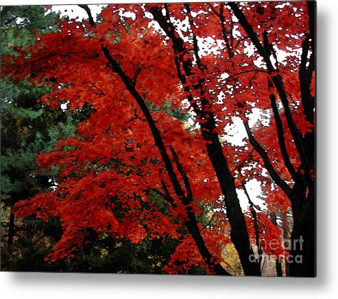 Autumn Metal Print featuring the photograph Autumn In New England by Melissa A Benson