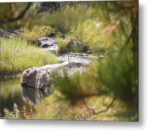 Metal Print featuring the photograph Babbeln Brook by Dennis Wilkins