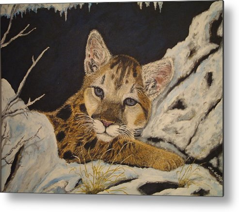 Baby Cougar Animal Nature Wildlife Snow Metal Print featuring the painting Baby Cougar In Snow by Nick Gustafson