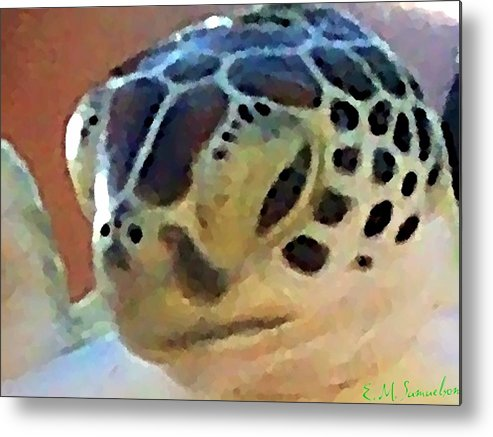 Turtle Metal Print featuring the photograph Baby Turtle by Elise Samuelson