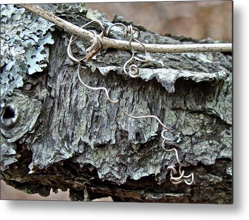 Tree Metal Print featuring the photograph Bark - Lichen - Cat Brier Tendrils by Mother Nature