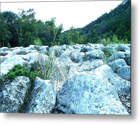 Texas Metal Print featuring the photograph Barton Creek Dried Up by Chuck Taylor