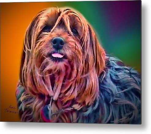 Maggie Metal Print featuring the photograph Beloved Maggie by Kathy Tarochione