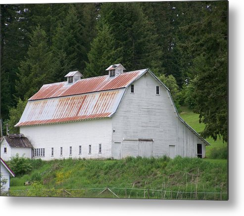White Metal Print featuring the photograph Big White Old Barn With Rusty Roof Washington State by Laurie Kidd