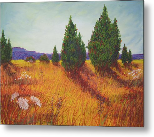 Virginia. Metal Print featuring the painting Birds And Fences by Wynn Creasy