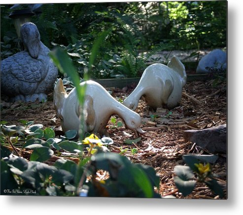 Garden Flowers Flower Bed Ornaments Garden Creatures Metal Print featuring the photograph Birds Eye View by Linda Ebarb