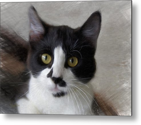 Kitty Metal Print featuring the digital art Black And White Kitty by  DonaRose