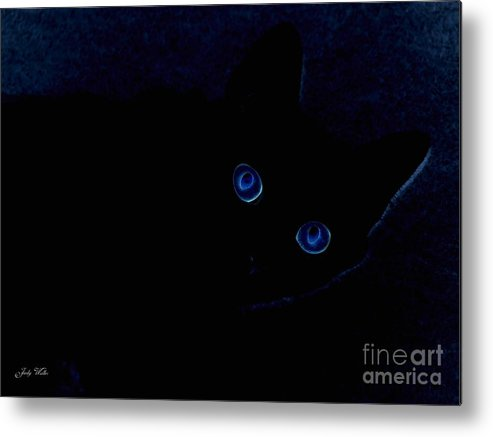 Cat-eyes Metal Print featuring the photograph Blue Cat Eyes by Judy Waller