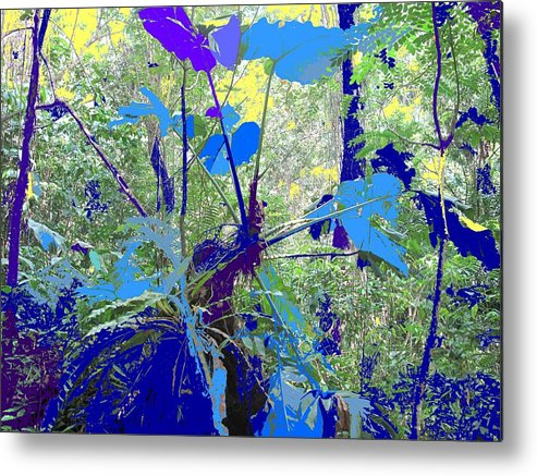 Metal Print featuring the photograph Blue Jungle by Ian MacDonald