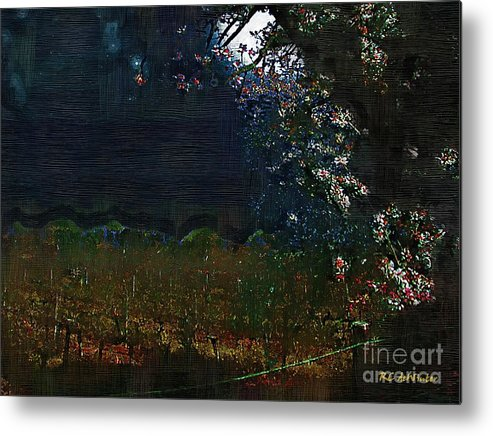 Dark Metal Print featuring the painting Blue Night In The Field by RC DeWinter