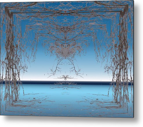 Branches Metal Print featuring the photograph Branching Outward by Tim Allen
