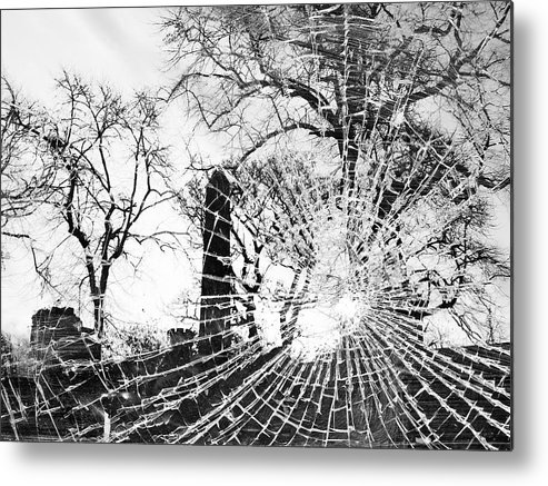 Tree Metal Print featuring the photograph Broken Trees by Munir Alawi