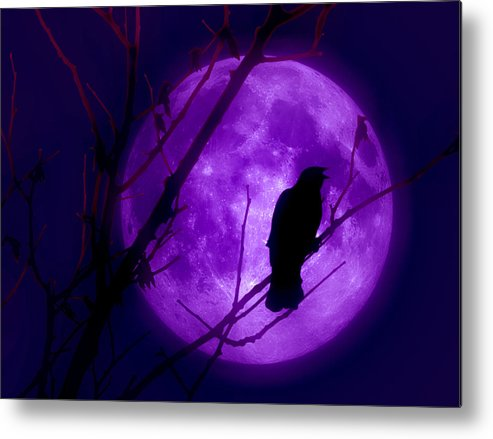 Moon Metal Print featuring the photograph Calling Out To The Night by Kenneth Krolikowski