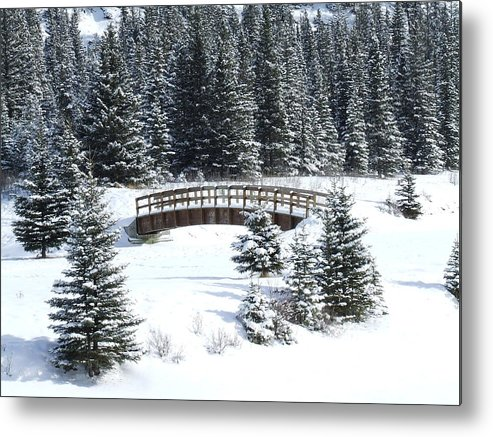Winter Metal Print featuring the photograph Cascade Christmas by Tiffany Vest