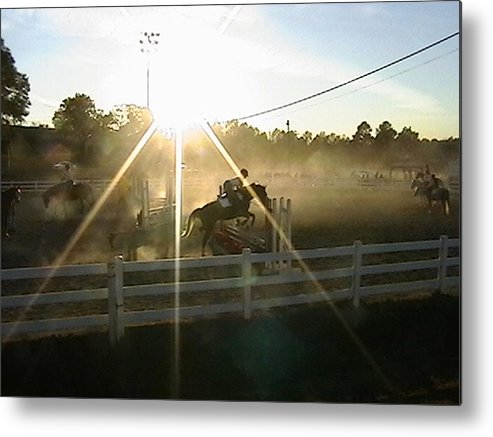 Horse Metal Print featuring the photograph Catching The Light by Donna Thomas