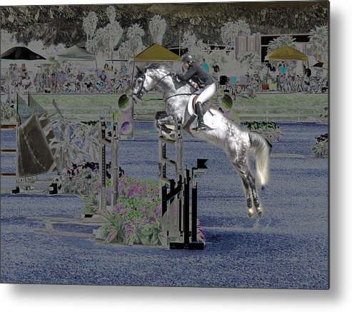 Horse Metal Print featuring the photograph Champion Horse Jumper by Bette Levine