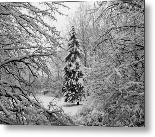 Fine Art Metal Print featuring the photograph Christmas Snow by Michael L Kimble