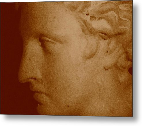 Sepia Metal Print featuring the photograph Classical Head by Susan Grissom