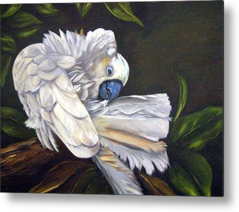 Birds Metal Print featuring the painting Cockatoo Preening by Anne Kushnick
