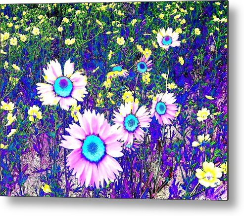 Photo Design Metal Print featuring the digital art Colormax 2 by Will Borden