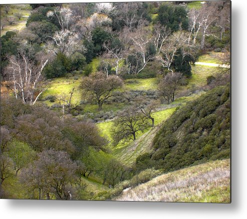 Landscapes Metal Print featuring the photograph Coming Down The Hill by Karen W Meyer